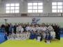 Турнир памяти Воробьева 2013 г.